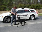 Dorchester County K-9